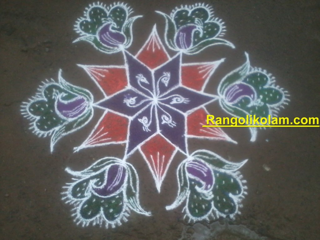 peacock kolam filled with different colours