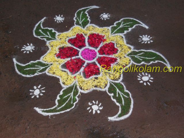 Friday poo kolam