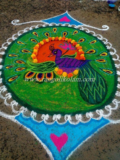 peacock kolam 635